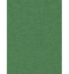 Baggrundspapir - farve: 31 Appel Green - professionel