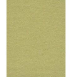 Baggrundspapir - farve: 13 Tropical Green - ekstra kraftig 6,2 kg kvalitet - knap 200 gr. pr. kvm.