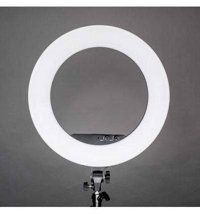 Ring Light LF-R480