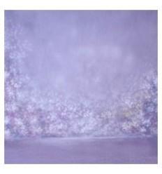 walimex pro stofbaggrund 'Bright',3x6m